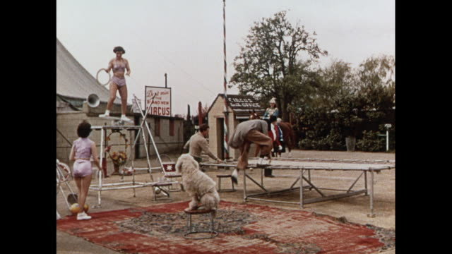 montage circus performers training in united kingdom - akrobat stock-videos und b-roll-filmmaterial