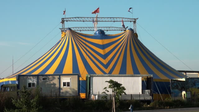 circus - circus stock videos & royalty-free footage