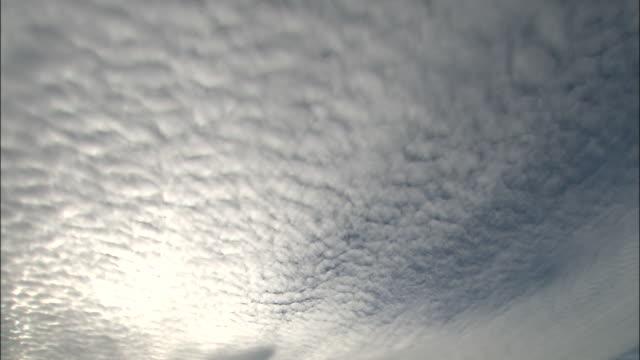 cirrocumulus clouds spread across the vast sky.  - cirrocumulus stock videos & royalty-free footage