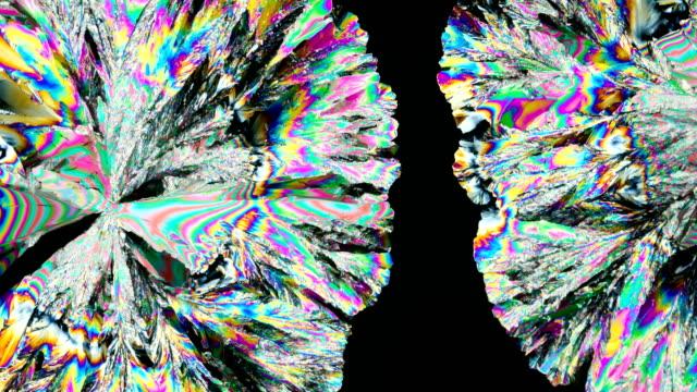 vídeos y material grabado en eventos de stock de citric acid crystallization under polarized light 4k timelapse - potasio