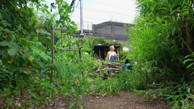 city allotment - dungarees stock videos & royalty-free footage