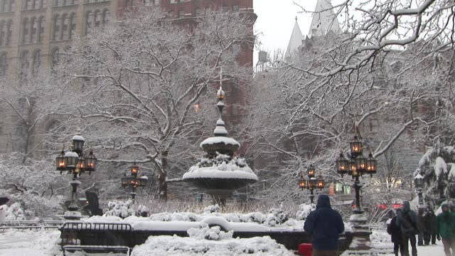 City Hall fountain covered in snow Available in HD