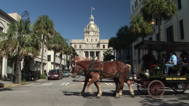 MS, City Hall, horse drawn carriage crossing street in foreground, Savannah, Georgia, USA