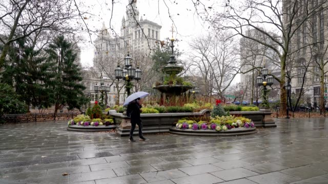 city hall park - new york - manhattan new york city stock videos & royalty-free footage