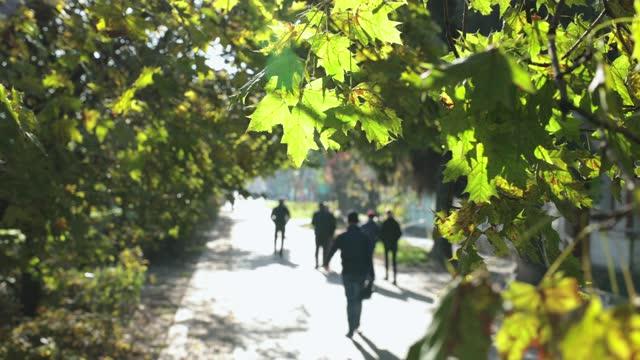 city life in the autumn season. - pedestrian zone stock videos & royalty-free footage