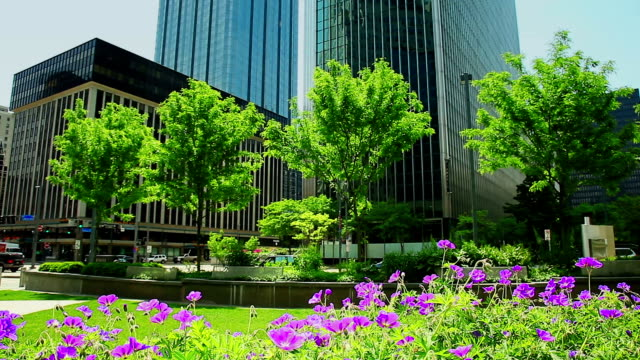 City life office buildings and park  background