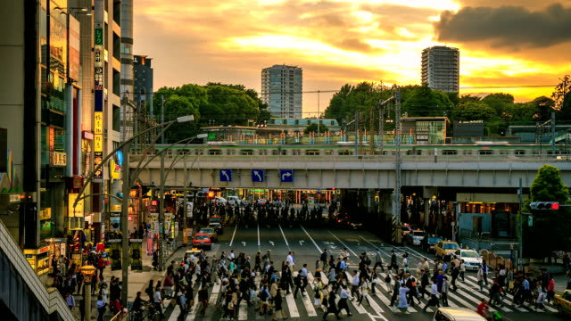 stockvideo's en b-roll-footage met city life zonsondergang - tokyo japan
