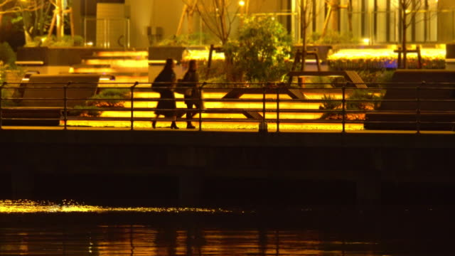 city lights reflections - people - plusphoto stock videos & royalty-free footage