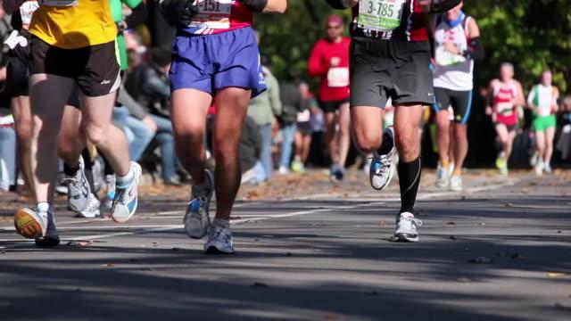 ms t/l city marathon runners running at central park / new york, united states - marathon stock-videos und b-roll-filmmaterial