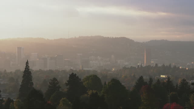 WS City of Portland is dramatically lit at sunset with trees / Portland, Oregon, United States