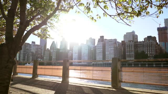 stockvideo's en b-roll-footage met city park and skyline view on beautiful sunny day. establishing shot - sunny