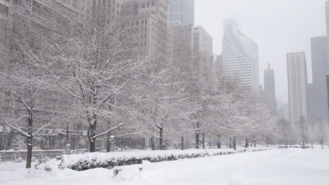 ws city park covered in snow - winter video stock e b–roll
