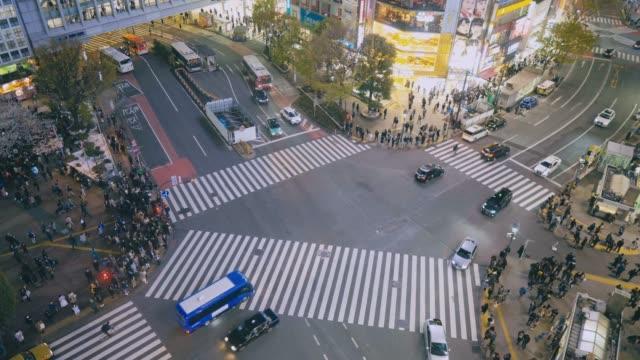 都市歩行者交通渋谷東京 - 歩道点の映像素材/bロール