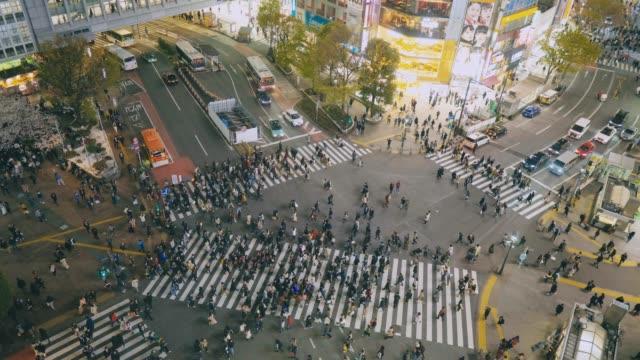 city pedestrian traffic shibuya tokyo - shibuya ward stock videos & royalty-free footage