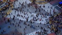 City Pedestrian Traffic Shibuya Tokyo