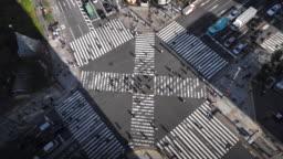 City Pedestrian Traffic, Top view of people crossing street