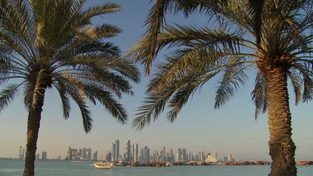 vídeos de stock, filmes e b-roll de ws city skyline seen across doha bay with palm trees in foreground / doha, qatar - qatar