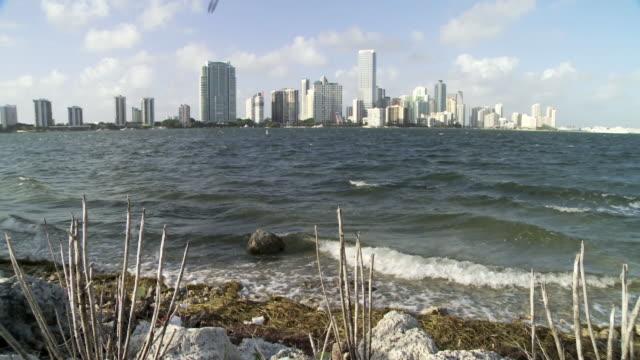 City skyline skyscrapers buildings birds flying Biscayne Bay waves breaking on shoreline FG Urban cityscape