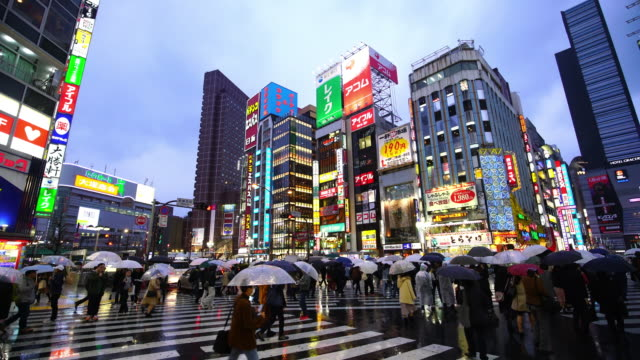 city street night life with crowd people in shinjuku - umbrella stock videos and b-roll footage