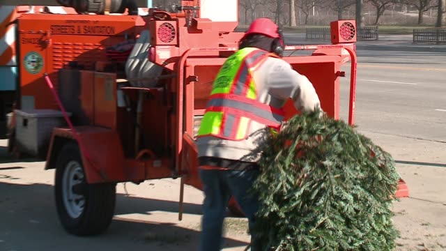 wgn city workers push christmas trees through wood chipper after christmas in chicago on dec 30 2016 - kieferngewächse stock-videos und b-roll-filmmaterial