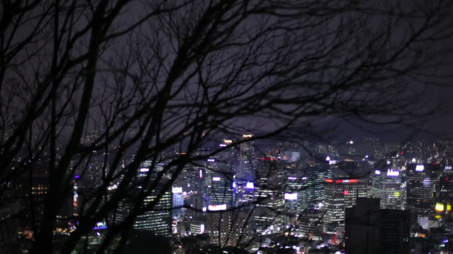 ws ha cityscape at night with bare tree branches in foreground / seoul, south korea - 50 seconds or greater stock videos & royalty-free footage