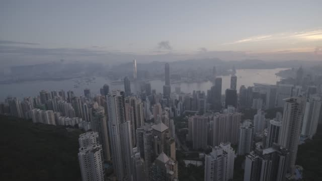 cityscape of hong kong from victoria peak, china - berg victoria peak stock-videos und b-roll-filmmaterial