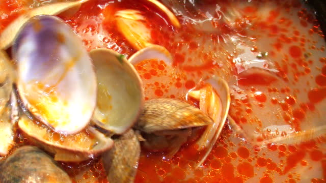 clams - clam seafood stock videos and b-roll footage