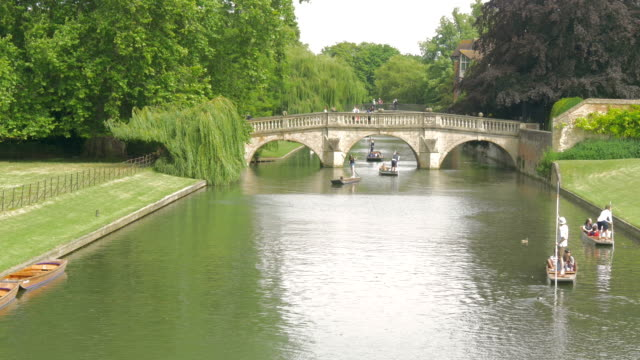 clare bridge, cambridge,punts,ms - oxford england stock videos & royalty-free footage