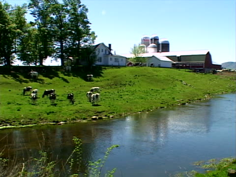 classic dairy barn, silos and house - herbivorous stock videos & royalty-free footage