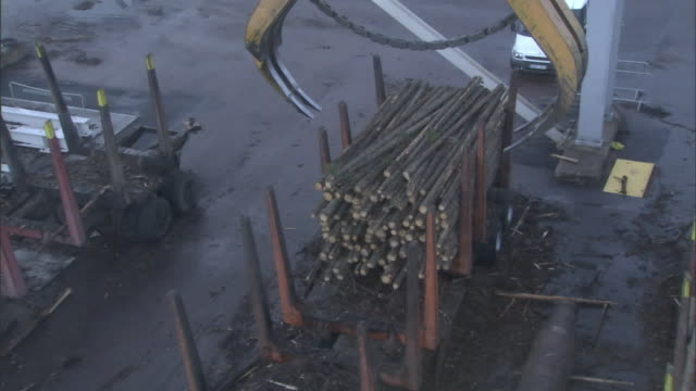 A claw crane picks up a bundle of logs at a paper mill.