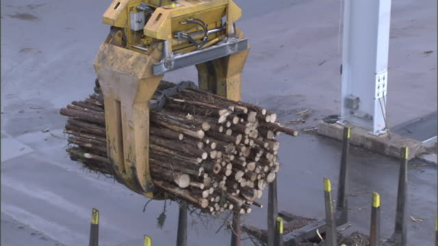 a claw crane picks up a bundle of logs. - paper mill stock videos and b-roll footage