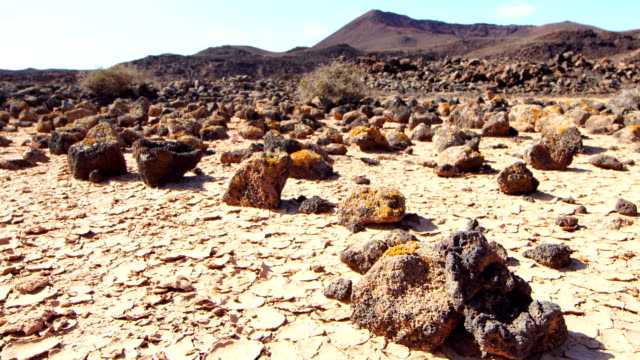 Clay chips in dry pond in the desert -Fuerteventura