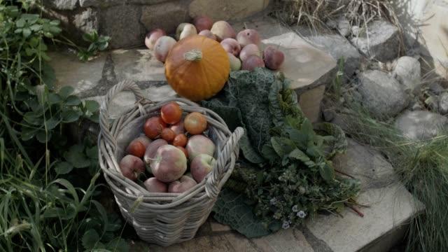 vidéos et rushes de clean eating & healthy living - automne