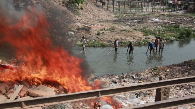 cleaner clean the lake which is stuck by waste in dhaka bangladesh on march 21 2018 - guter zustand stock-videos und b-roll-filmmaterial