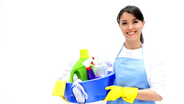 Cleaner holding cleaning products