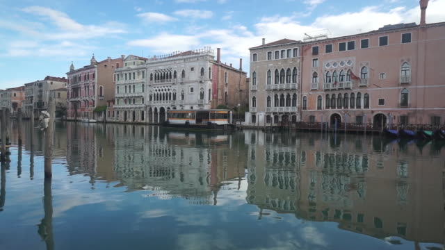 cleaner waters and wildlife returning to the city during coronavirus lockdown in venice, veneto, italy on friday, may 1, 2020. as economies in china... - stationary stock-videos und b-roll-filmmaterial