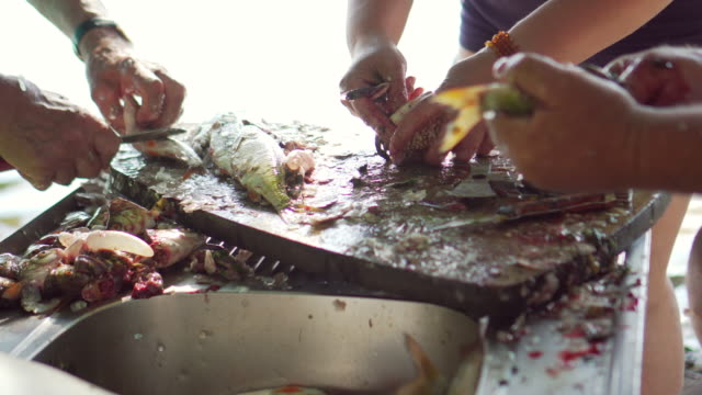 cleaning fish from scales - sea squirt stock videos & royalty-free footage
