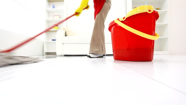 Cleaning lady mopping floors in a room.