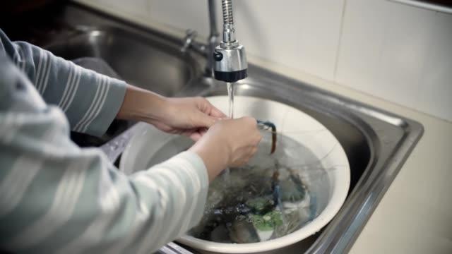 stockvideo's en b-roll-footage met cu: schoonmaken garnaal, preaparing eten - steurgarnaal