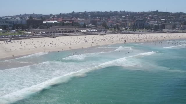 Clear blue sky view from ocean over Bondi beach towards pavilion large group of swimmers and body surfers in water and moderate covering of...