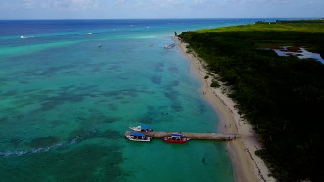clear caribbean seat in cozumel mexico - cozumel stock videos and b-roll footage