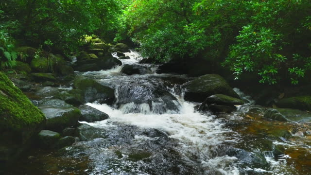 clear mountain river flowing through narrow valley - northern europe stock videos & royalty-free footage