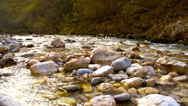 slo mo clear river in the forest - kiselsten bildbanksvideor och videomaterial från bakom kulisserna