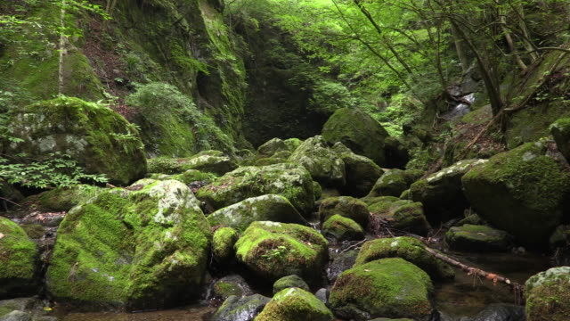 Clear stream of Japan