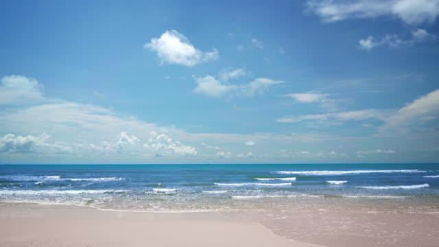 明確な熱帯のビーチ - 4k解像度点の映像素材/bロール