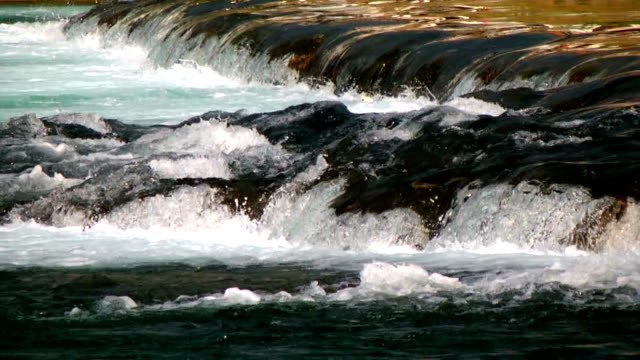 vídeos de stock, filmes e b-roll de água cristalina fluindo downhill - cabelo verde