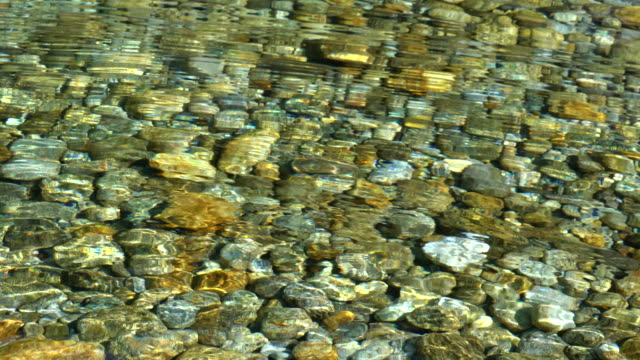 clear water in a mountain river