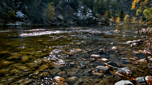 clear water in mountain river - river yellowstone stock videos & royalty-free footage