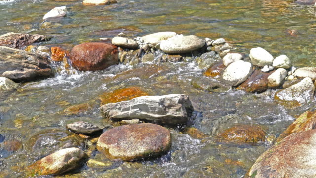 Clear waters in an Alpine river.