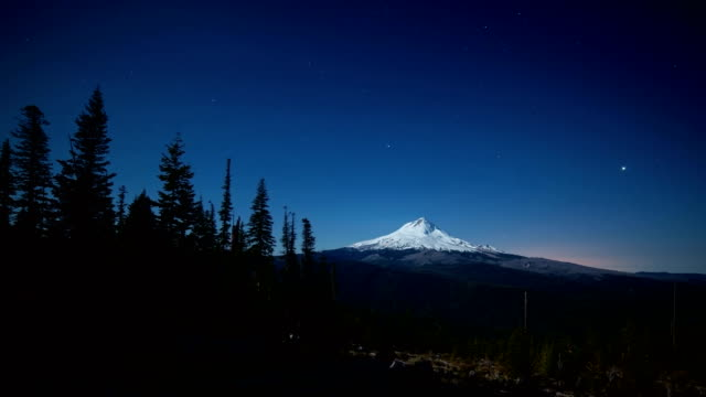 clearcut recovery salvage logging after wildfire forest fire in the cascade mountains with mt. hood silhouette stars at night moonlight - mt hood stock videos & royalty-free footage